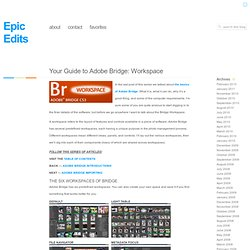 Your Guide to Adobe Bridge: Workspace