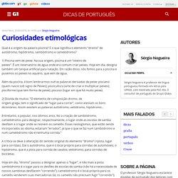 G1 Educação - Dicas de Português - Professor Sérgio Nogueira