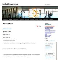 Institut Llavaneres