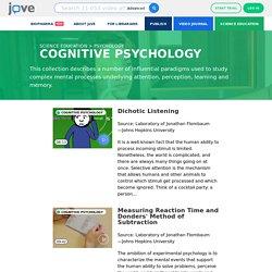 Science Education > Cognitive Psychology