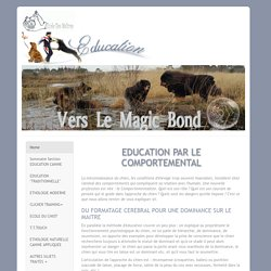 EDUCATION CANINE PAR LE COMPORTEMENTALISME