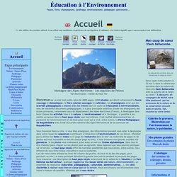 Education environnement