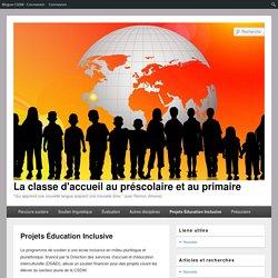 Projets Éducation Inclusive – La classe d'accueil au préscolaire et au primaire