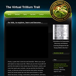 The Virtual Trillium Trail an Educational Simulation of a North American Forest by Virtual Field Trips, LLC.
