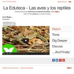 La Eduteca - Las aves y los reptiles