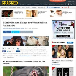 article_20827_5-eerily-human-things-you-wont-believe-animals-do