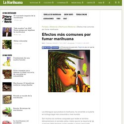 Efectos más comunes por fumar marihuana