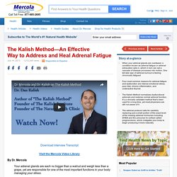 The Kalish Method: An Effective Way to Heal Adrenal Fatigue