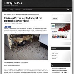 This is an effective way to destroy all the cockroaches in your house! - Healthy Life Idea