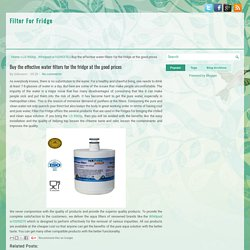 Buy the effective water filters for the fridge at the good prices ~ Filter For Fridge