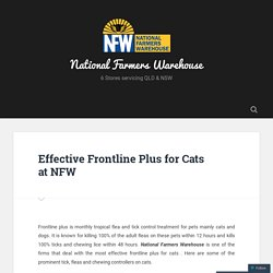 Effective Frontline Plus for Cats at NFW – National Farmers Warehouse
