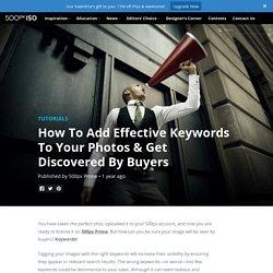Keywording - 500px