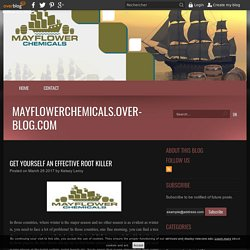 Get Yourself An Effective Root Killer - mayflowerchemicals.over-blog.com