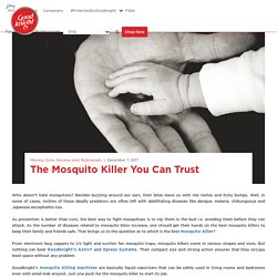The Fast, Effective & Baby-Safe Method to Kill Mosquitoes