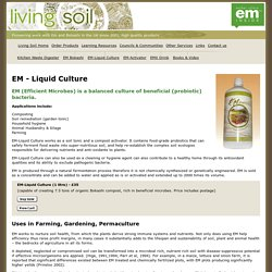 Effective Micro-organisms Liquid - Living Soil