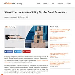 5 Most Effective Amazon Selling Tips For Small Businesses