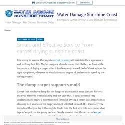 Smart and Effective Service From carpet drying sunshine coast – Water Damage Sunshine Coast