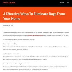 Clean All bugs from Your House by Using These Tips
