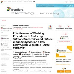 FRONTIERS IN MICROBIOLOGY 20/10/16 Effectiveness of Washing Procedures in Reducing Salmonella enterica and Listeria monocytogenes on a Raw Leafy Green Vegetable (Eruca vesicaria)