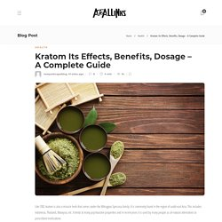 OPMS Gold Kratom Capsules by The Vapery