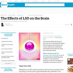 The Effects of LSD on the Brain (Hallucinations)