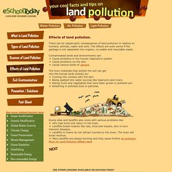 Effects and dangers of land pollution