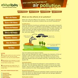 Effects of Air Pollution on humans, plants and animals