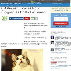 6 Astuces Efficaces Pour Éloigner les Chats Facilement.