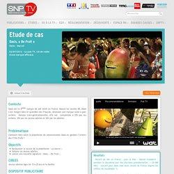 Les études de cas : Lumière sur l'efficacité des campagnes TV. - Syndicat National de la Publicité Télévisée