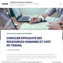 CONCILIER EFFICACITÉ DES RESSOURCES HUMAINES ET COÛT DU TRAVAIL – M'SIEUR