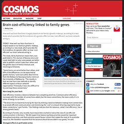 Brain cost-efficiency linked to family genes