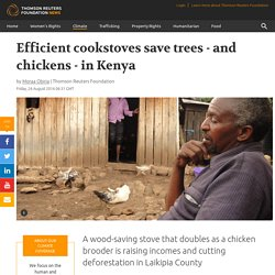 Sustainable development: Efficient cookstoves save trees - and chickens - in Kenya