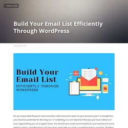 Build Your Email List Efficiently Through WordPress