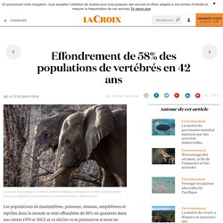 Effondrement de 58% des populations de vertébrés en 42 ans - La Croix