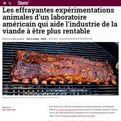Les effrayantes expérimentations animales d'un laboratoire américain qui aide l'industrie de la viande à être plus rentable