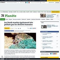 Les fonds marins également très pollués par les déchets humains