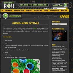 Eggshell Geode Crystals - ScienceBob.com