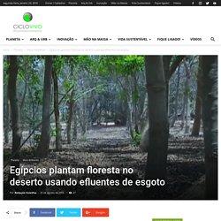 Egípcios plantam floresta no deserto usando efluentes de esgoto - CicloVivo