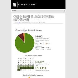Crise en Egypte et le rôle de Twitter [infographie]