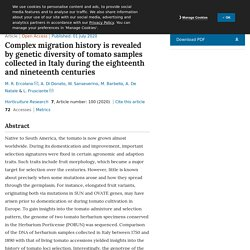 Complex migration history is revealed by genetic diversity of tomato samples collected in Italy during the eighteenth and nineteenth centuries