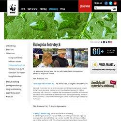 Ekologiska fotavtryck - Lärarrum - Utbildning