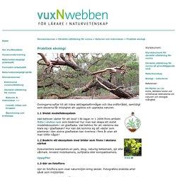 Ekosystem - samband i naturen