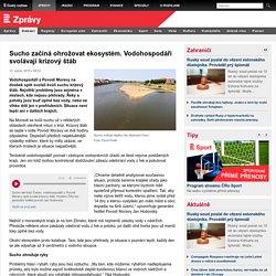 Sucho začíná ohrožovat ekosystém. Vodohospodáři svolávají krizový štáb