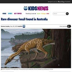 Elaphrosaur vertebra fossil found at Eric the Red West dig site in Victoria, Australia