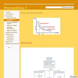 Elasticidad de la Demanda - Matemática 2