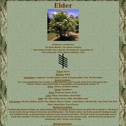 Elderflower - links with Isis, Venus...atop Harry & Meghans wedding cake...theyre laughing at us