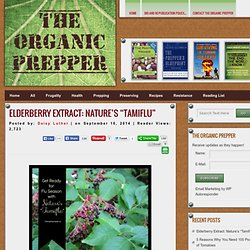 "Elderberry Extract: Nature's ""Tamiflu"""