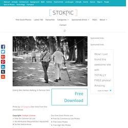Elderly Men Besties Walking In Parisian Park - stokpic