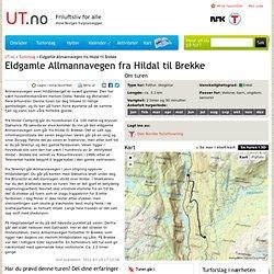 Eldgamle Allmannavegen fra Hildal til Brekke - Tur