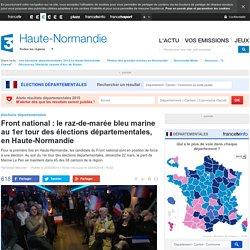 Front national : le raz-de-marée bleu marine au 1er tour des élections départementales, en Haute-Normandie - France 3 Haute-Normandie